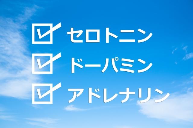 f:id:BloggerJIN:20210509060515j:plain