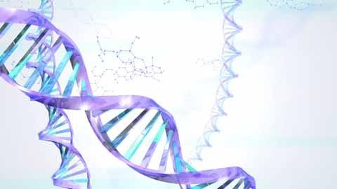 遺伝子 画像 に対する画像結果