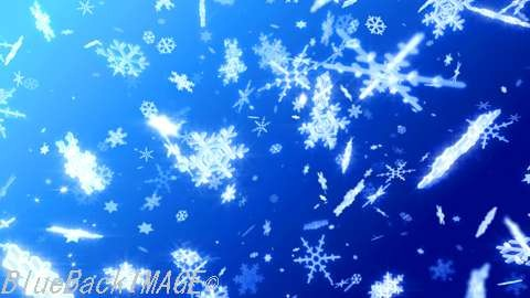 Snow Flake DL2.jpg