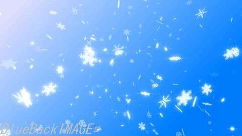 Snow Flake DM1.jpg