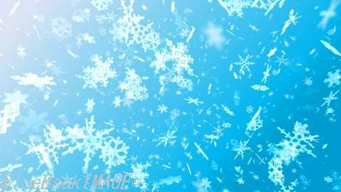 Snow Flake Dmix1.jpg