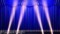 Stage Curtain 2_Fbs1.jpg