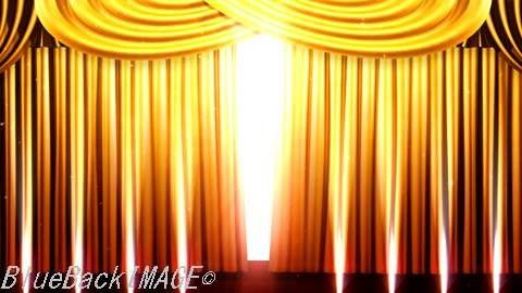 Stage Curtain 2_Fgs1.jpg