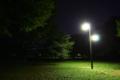 [風景]夜の代々木公園