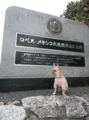 [犬]千葉県御宿 メキシコ塔にて