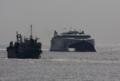[艦船]2010年2月21日 久里浜沖を航行するナッチャンWorld
