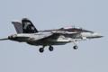 [飛行機]2013年5月6日 厚木R/W19に着陸するVAQ-141のEA-18G(NF500/Bu.No.166928)