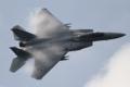 [飛行機]平成26年度航空観閲式で飛行展示を行う305飛行隊のF-15J(22-8812)