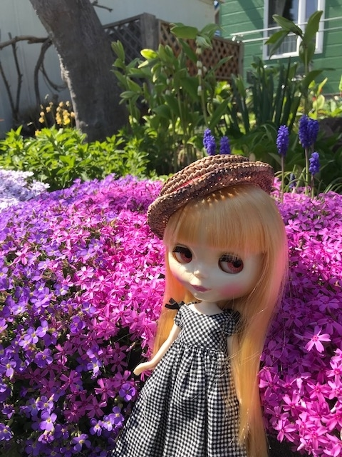 お花満開のお庭で写真を撮るブライスbunちゃん