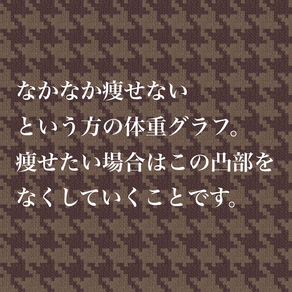f:id:BodyVoice-Japan:20181227162217j:image