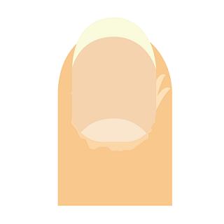 f:id:Boke-Boke:20201001220206p:plain