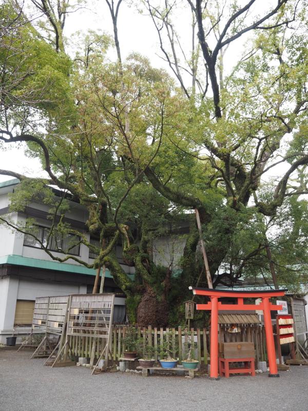 f:id:Bosssuke:20160306230427j:plain