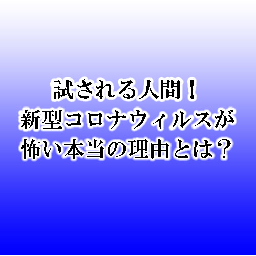 f:id:Boyager:20200322161405j:plain