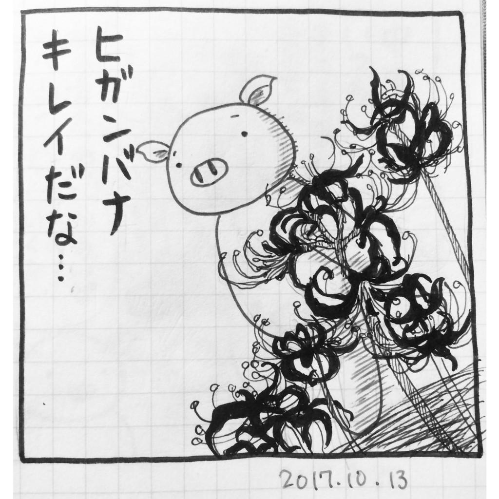 f:id:Butakun:20171014190014j:plain