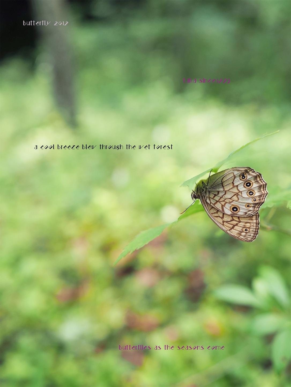 f:id:ButterflyTakaji:20190823013156j:image