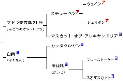 f:id:CATNIP:20200922121838p:plain