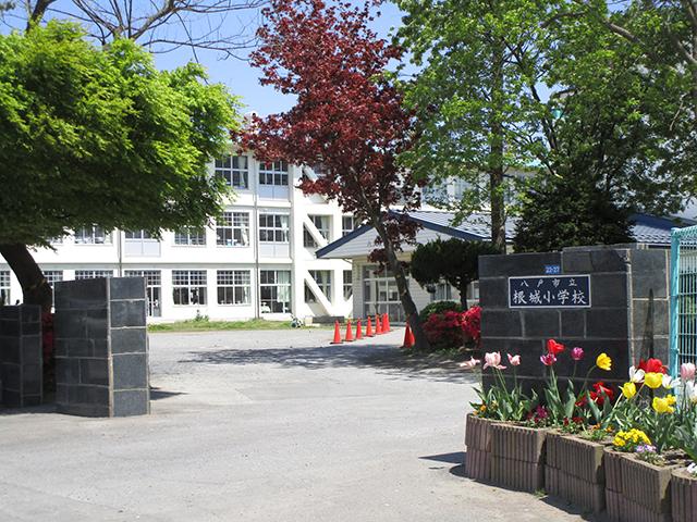 八戸市 根城小学校 写真画像