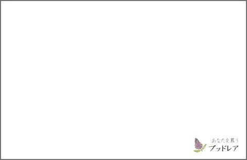f:id:CHICALOG:20201007102256j:plain