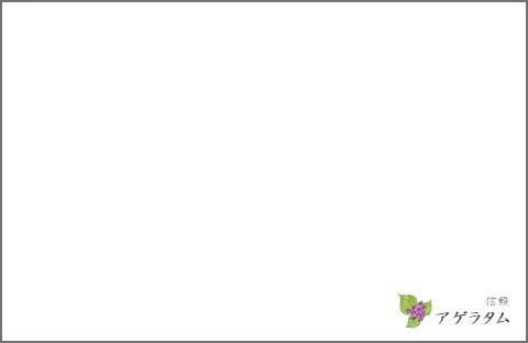 f:id:CHICALOG:20201007102450j:plain