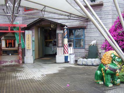 怪しい少年少女博物館 入口