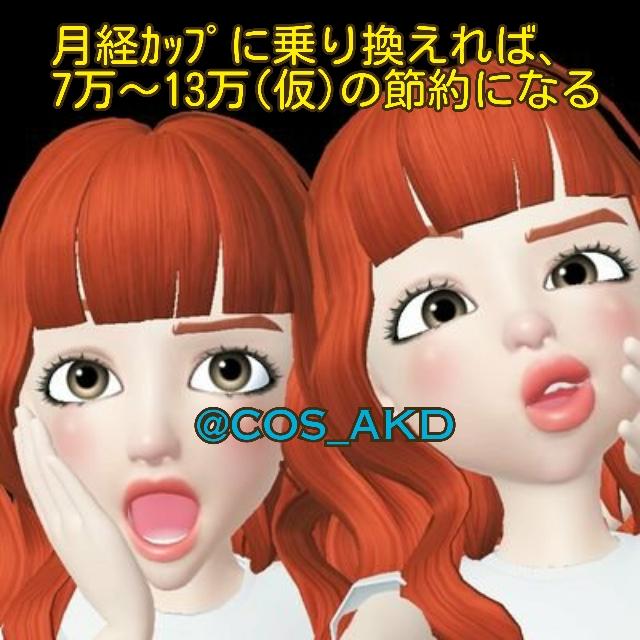 f:id:COS_AKD:20190316163206j:plain