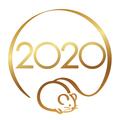2020年300x300