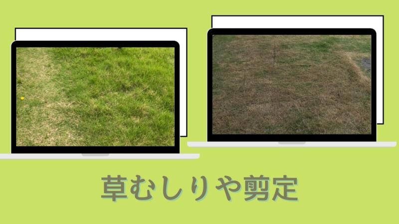 草むしりや剪定
