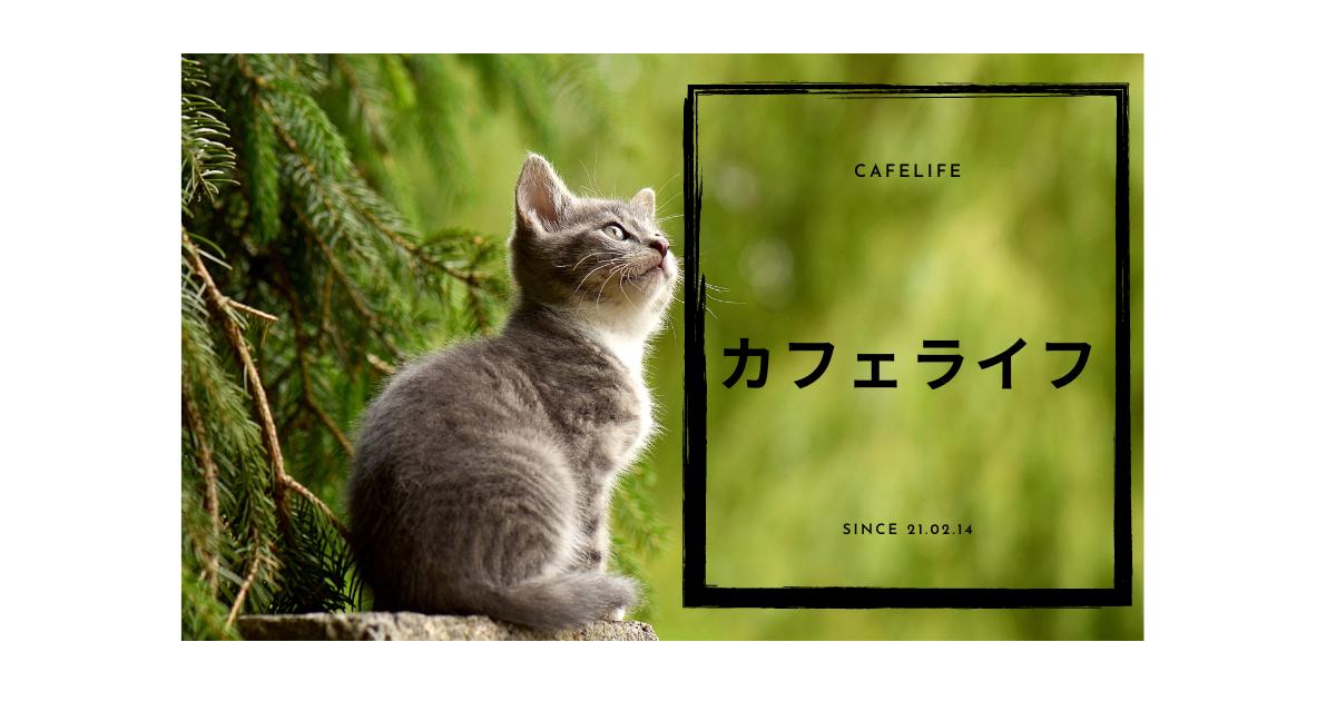 f:id:Cafelife:20210225184448p:plain