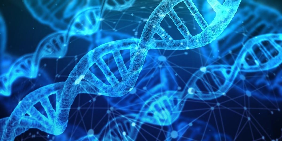 AGAになるかどうかは主に遺伝によって決まる