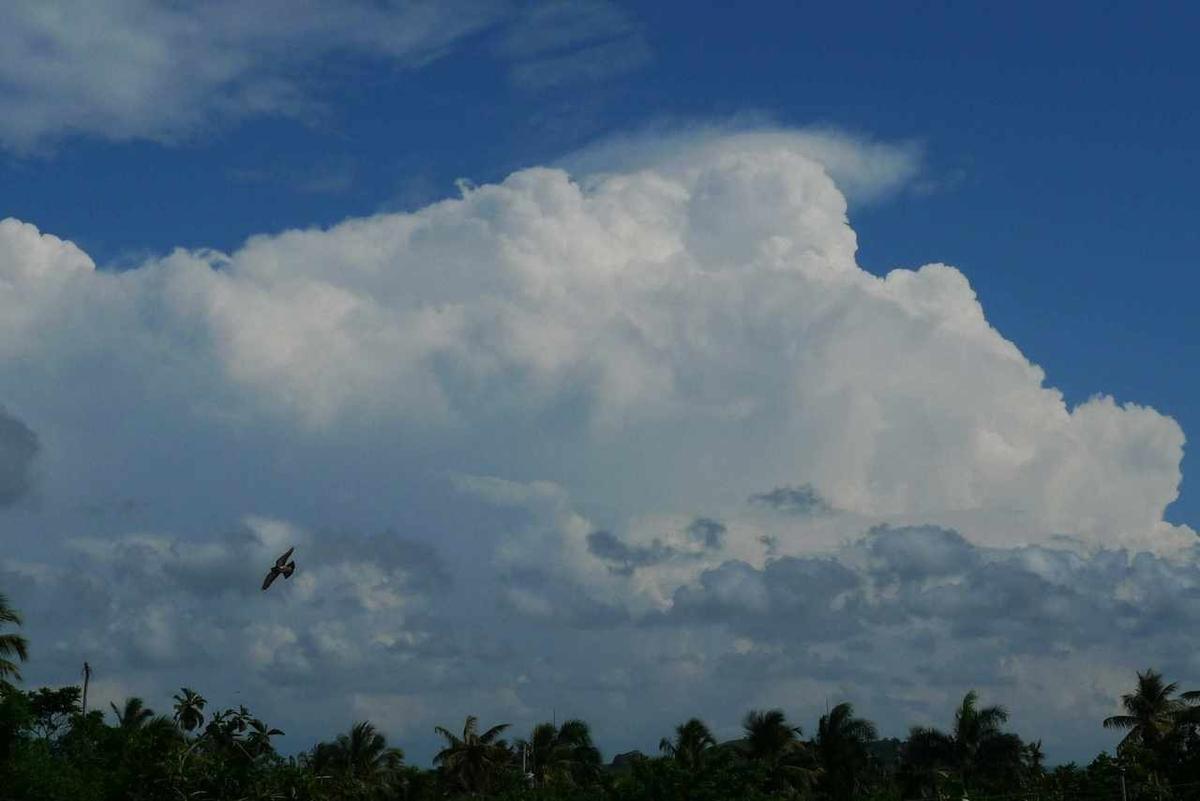 カリブの島国の空
