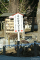高砂の松@阿蘇神社