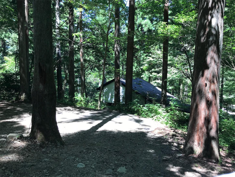 f:id:Camp_mania_kanagawa:20180831144111j:image