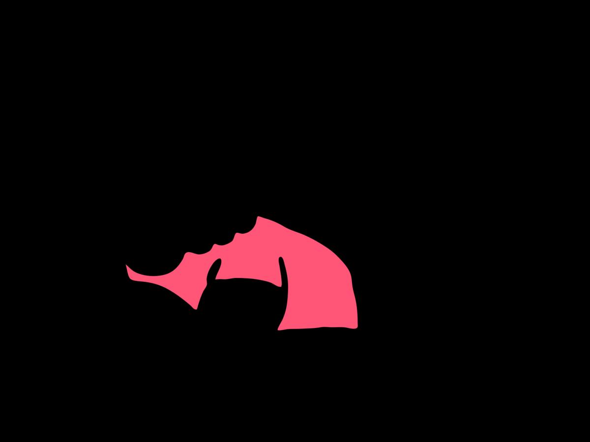 f:id:Capybarablog:20210624010248p:plain