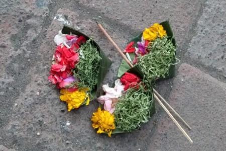バリの神様にお供えするチャナン 小さく切ったバナナの葉に、花、米、線香が飾り付けられている