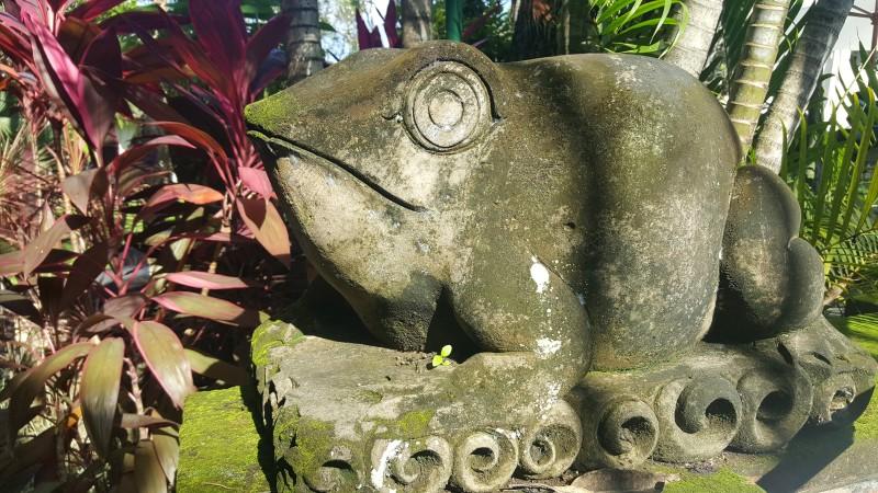 バリで撮影したかえるの石像