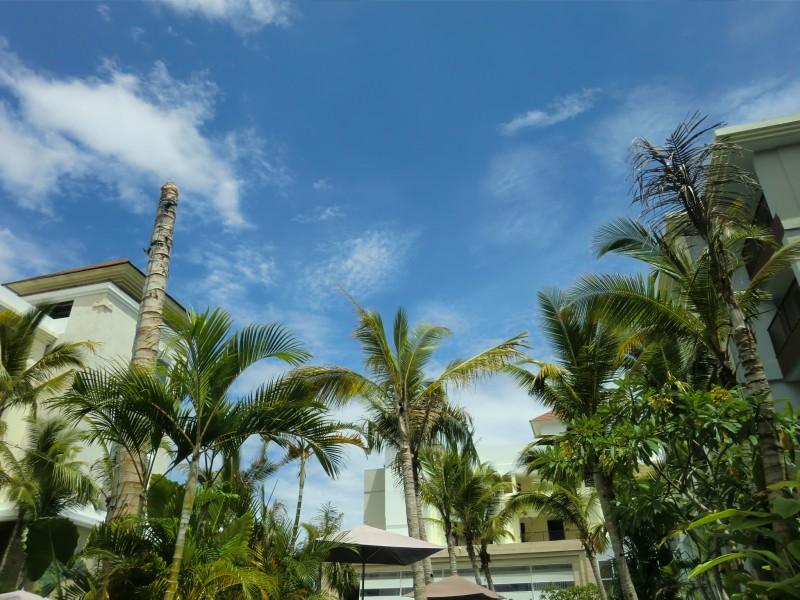 青空とヤシの木とホテルの建物