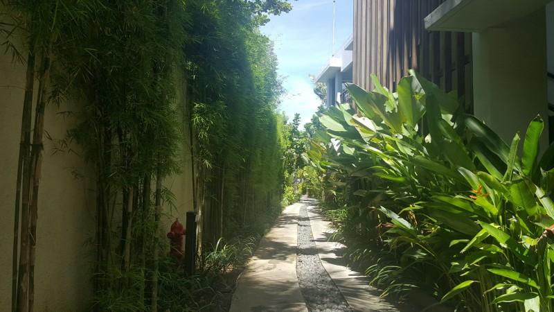 裏道も美しく整えられている:フェアモント サヌール ビーチ