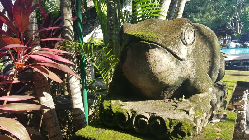 カエルの石像 苔むしている