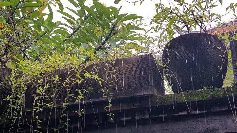 バリ島のホテル 壁の上に置かれた植木鉢に大粒の雨が降っている