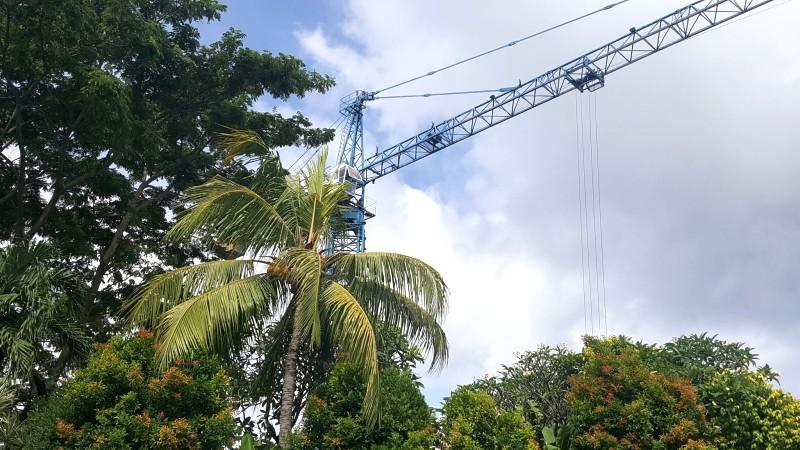 バリ島 ヤシの木の向こうに工事のクレーンがのぞいている