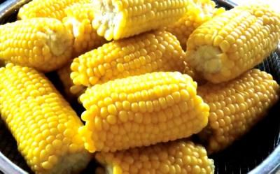 山盛りの茹でたトウモロコシ