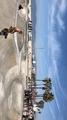 Venice beach ( skate park)