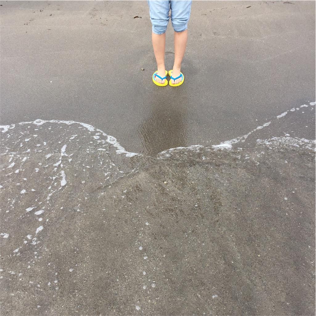 f:id:Chajirushi:20160601151843j:image