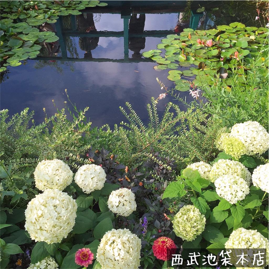 f:id:Chajirushi:20160626093751j:image