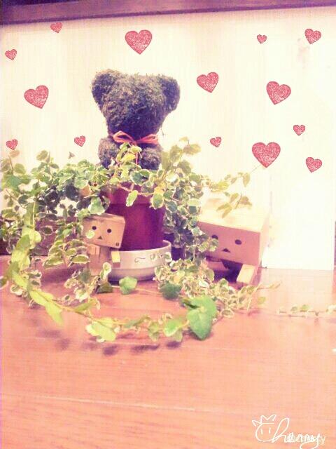 ダンボーお花でかくれんぼ