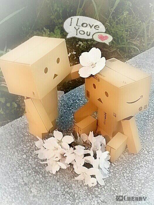 ダンボー桜ラブ