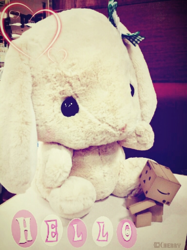 ダンボー、ウサギさんと仲良し
