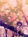 [cherry、ディズニー、ト] cherryのトイ・ストーリージェシー桜見つけた!