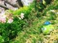 [花見 桜 モンスター] 桜咲いてる!