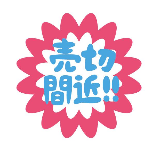 f:id:Cherrysakura:20190526074418j:plain